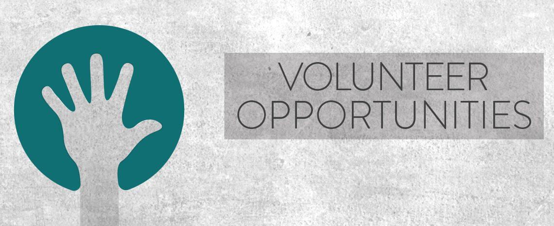 New Volunteer Opportunities